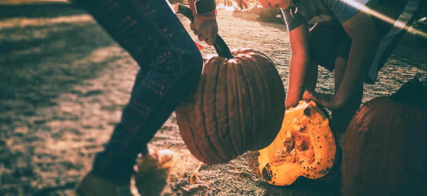 Fall Activities for the Whole Family
