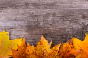 Fun Things To Do This Fall